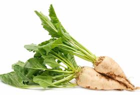 Новые гербициды «Агротек» для защиты сахарной свеклы