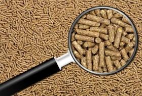 Зоотехнический анализ кормов