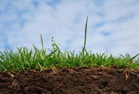 Чтобы почва была плодородной