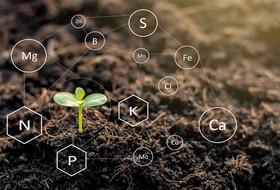 Научное сопровождение раскроет потенциал каждого поля