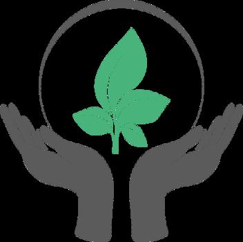 Отечественные средства защиты растений – «Шанс» для аграриев