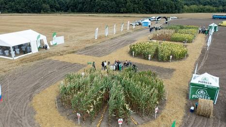 В России состоялась первая студенческая АгроАкадемия Pioneer