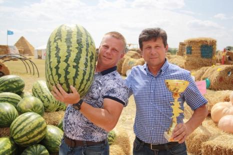 Фермеры –  за российскую селекцию