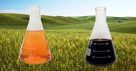 Функции гуминовых веществ, полезные в сельском хозяйстве