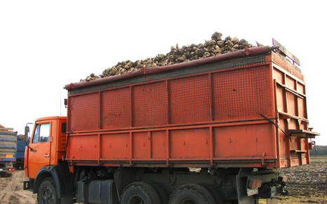 Гибриды БЕТАСИД бьют рекорды урожайности