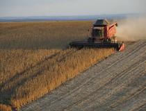 Больше твердой и надежной пшеницы