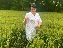 Закончен прием заявок на проведение апробации семенных посевов с/х культур и начаты полевые обследования