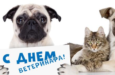Работникам ветеринарной службы посвящается